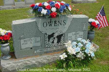 OWENS, LARRY - Fulton County, Arkansas | LARRY OWENS - Arkansas Gravestone Photos