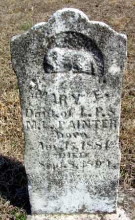 PAINTER, MARY E. - Fulton County, Arkansas   MARY E. PAINTER - Arkansas Gravestone Photos