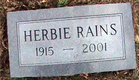 RAINS, HERBIE - Fulton County, Arkansas | HERBIE RAINS - Arkansas Gravestone Photos