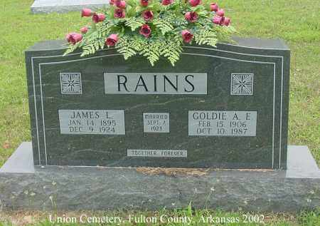 RAINS, JAMES L. - Fulton County, Arkansas | JAMES L. RAINS - Arkansas Gravestone Photos
