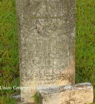 RAINS, SAMANTHA AMANDA - Fulton County, Arkansas | SAMANTHA AMANDA RAINS - Arkansas Gravestone Photos
