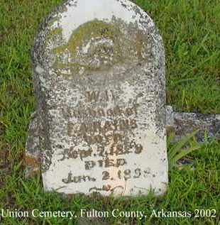 RAINS, WILLIAM H. - Fulton County, Arkansas | WILLIAM H. RAINS - Arkansas Gravestone Photos