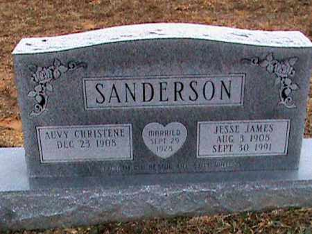 SANDERSON, AUVY CHRISTENE - Fulton County, Arkansas | AUVY CHRISTENE SANDERSON - Arkansas Gravestone Photos