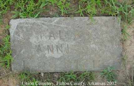 TALLEY, ANNIE - Fulton County, Arkansas | ANNIE TALLEY - Arkansas Gravestone Photos