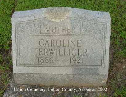 TERWILLIGER, CAROLINE - Fulton County, Arkansas | CAROLINE TERWILLIGER - Arkansas Gravestone Photos