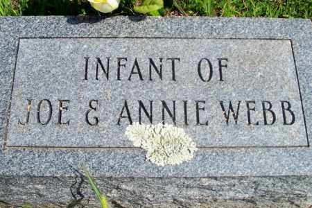 WEBB, INFANT - Fulton County, Arkansas | INFANT WEBB - Arkansas Gravestone Photos