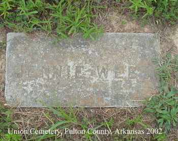WEBB, JENNIE - Fulton County, Arkansas | JENNIE WEBB - Arkansas Gravestone Photos