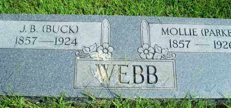 WEBB, MOLLIE - Fulton County, Arkansas | MOLLIE WEBB - Arkansas Gravestone Photos