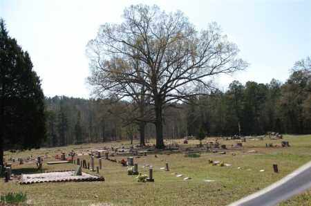 *PEAK CEMETERY, OVERVIEW - Garland County, Arkansas | OVERVIEW *PEAK CEMETERY - Arkansas Gravestone Photos