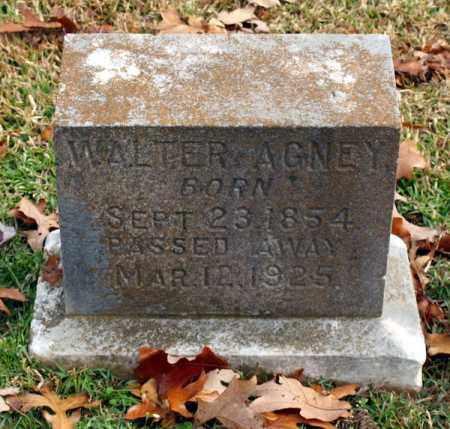 AGNEY, WALTER - Garland County, Arkansas | WALTER AGNEY - Arkansas Gravestone Photos