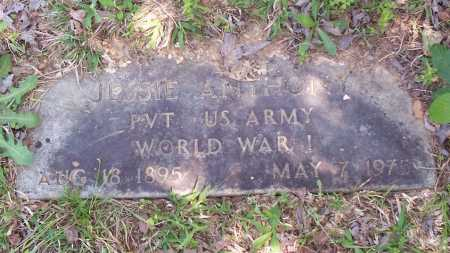 ANTHONY (VETERAN WWI), JESSIE - Garland County, Arkansas | JESSIE ANTHONY (VETERAN WWI) - Arkansas Gravestone Photos