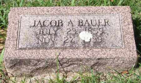 BAUER, JACOB A. - Garland County, Arkansas | JACOB A. BAUER - Arkansas Gravestone Photos