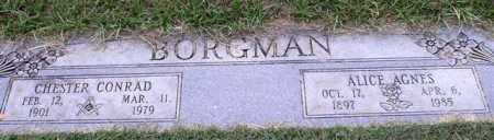 BORGMAN, ALICE AGNES - Garland County, Arkansas | ALICE AGNES BORGMAN - Arkansas Gravestone Photos