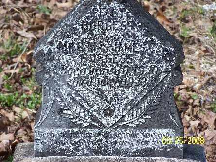 BURGESS, PEGGY - Garland County, Arkansas | PEGGY BURGESS - Arkansas Gravestone Photos