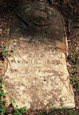 DICKENS, ISAAC - Garland County, Arkansas | ISAAC DICKENS - Arkansas Gravestone Photos