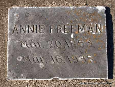 FREEMAN, ANNIE - Garland County, Arkansas | ANNIE FREEMAN - Arkansas Gravestone Photos