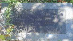 HENRY, FREDA L. - Garland County, Arkansas | FREDA L. HENRY - Arkansas Gravestone Photos