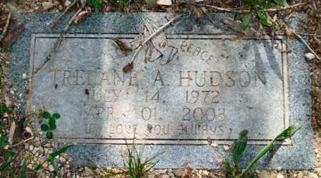 HUDSON, TRELANE A. - Garland County, Arkansas | TRELANE A. HUDSON - Arkansas Gravestone Photos