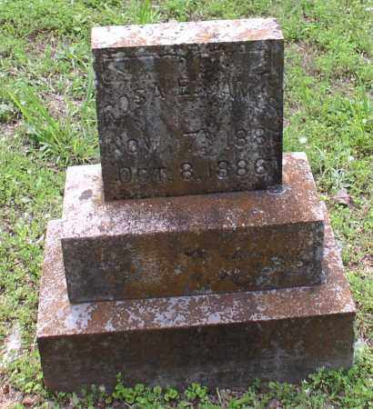 JAMES, ROSA E. - Garland County, Arkansas | ROSA E. JAMES - Arkansas Gravestone Photos