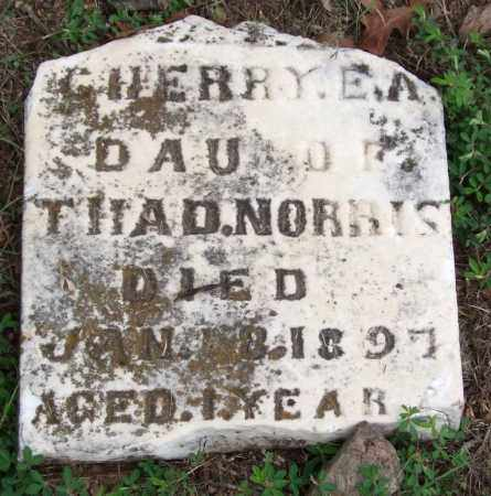 NORRIS, CHERRY E. A. - Garland County, Arkansas | CHERRY E. A. NORRIS - Arkansas Gravestone Photos