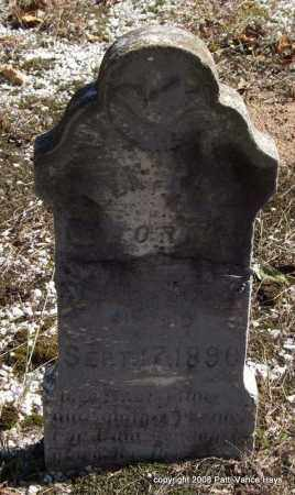 REECE, ELLEN - Garland County, Arkansas | ELLEN REECE - Arkansas Gravestone Photos