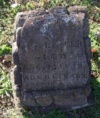 SPRINGER, S. - Garland County, Arkansas | S. SPRINGER - Arkansas Gravestone Photos