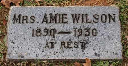 WILSON, AMIE - Garland County, Arkansas | AMIE WILSON - Arkansas Gravestone Photos