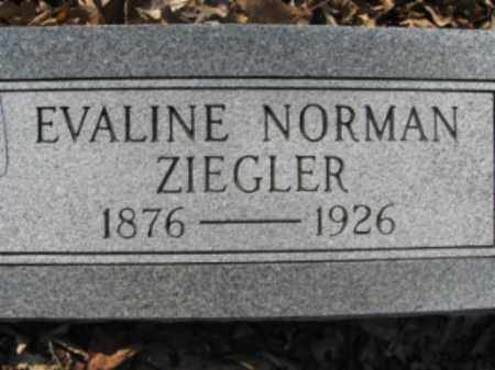 NORMAN ZIEGLER, EVALINE - Garland County, Arkansas | EVALINE NORMAN ZIEGLER - Arkansas Gravestone Photos