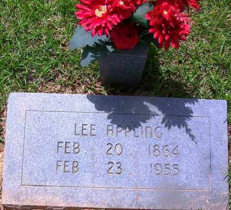 APPLING, LEE - Grant County, Arkansas | LEE APPLING - Arkansas Gravestone Photos