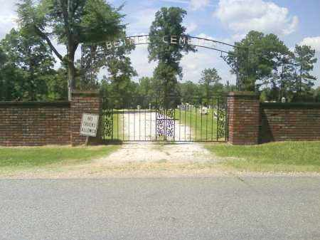 *BETHEL NORTH CEMETERY GATE,  - Grant County, Arkansas |  *BETHEL NORTH CEMETERY GATE - Arkansas Gravestone Photos