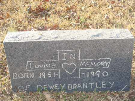 BRANTLEY, DEWEY - Grant County, Arkansas | DEWEY BRANTLEY - Arkansas Gravestone Photos