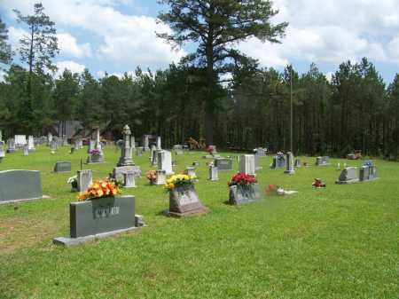 *CLEMENT CEMETERY OVERVIEW,  - Grant County, Arkansas |  *CLEMENT CEMETERY OVERVIEW - Arkansas Gravestone Photos