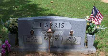 HARRIS, JAMES W - Grant County, Arkansas | JAMES W HARRIS - Arkansas Gravestone Photos