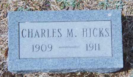 HICKS, CHARLES M. - Grant County, Arkansas | CHARLES M. HICKS - Arkansas Gravestone Photos