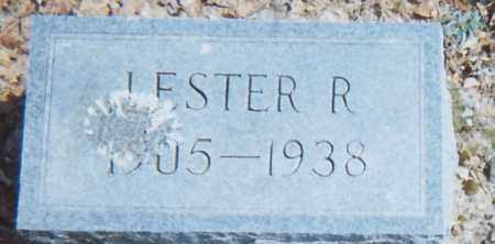 HICKS, LESTER R - Grant County, Arkansas | LESTER R HICKS - Arkansas Gravestone Photos