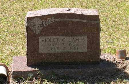 HARRISON JAMES, VIOLET G - Grant County, Arkansas | VIOLET G HARRISON JAMES - Arkansas Gravestone Photos