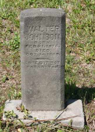 JOHNSON, WALTER - Grant County, Arkansas | WALTER JOHNSON - Arkansas Gravestone Photos