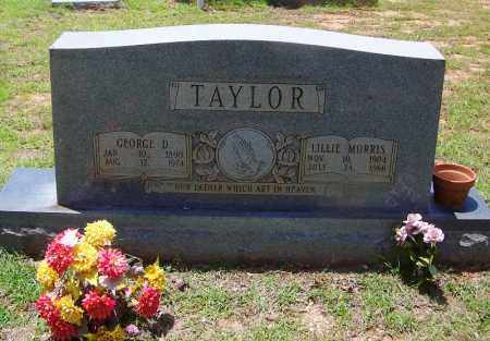 TAYLOR, GEORGE D - Grant County, Arkansas | GEORGE D TAYLOR - Arkansas Gravestone Photos
