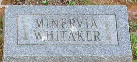 VANCE WHITAKER, MINERVIA - Grant County, Arkansas | MINERVIA VANCE WHITAKER - Arkansas Gravestone Photos