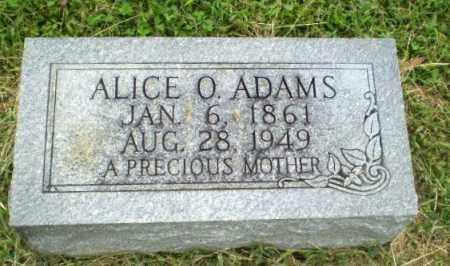 ADAMS, ALICE O - Greene County, Arkansas | ALICE O ADAMS - Arkansas Gravestone Photos