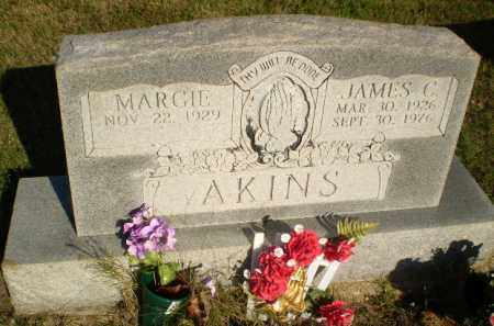 AKINS, JAMES C - Greene County, Arkansas | JAMES C AKINS - Arkansas Gravestone Photos