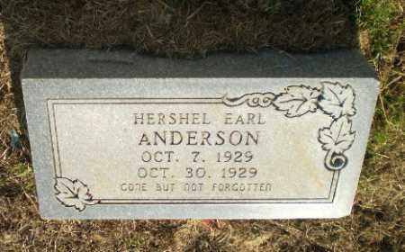 ANDERSON, HERSHEL EARL (INFANT) - Greene County, Arkansas | HERSHEL EARL (INFANT) ANDERSON - Arkansas Gravestone Photos