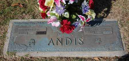 ANDIS, JETTIE M. - Greene County, Arkansas | JETTIE M. ANDIS - Arkansas Gravestone Photos