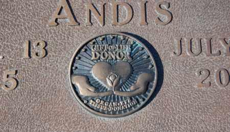ANDIS, JOHN CECIL (CLOSEUP) - Greene County, Arkansas | JOHN CECIL (CLOSEUP) ANDIS - Arkansas Gravestone Photos