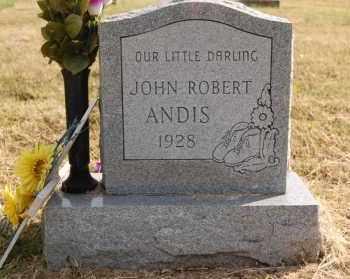 ANDIS, JOHN ROBERT - Greene County, Arkansas | JOHN ROBERT ANDIS - Arkansas Gravestone Photos