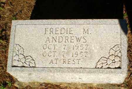 ANDREWS, FREDIE M - Greene County, Arkansas | FREDIE M ANDREWS - Arkansas Gravestone Photos