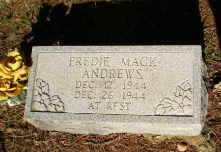 ANDREWS, FREDIE MACK - Greene County, Arkansas | FREDIE MACK ANDREWS - Arkansas Gravestone Photos