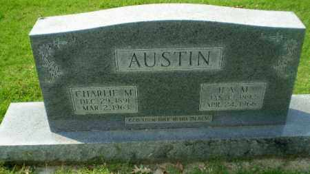 AUSTIN, CHARLIE M - Greene County, Arkansas | CHARLIE M AUSTIN - Arkansas Gravestone Photos