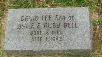 BELL, DAVID LEE - Greene County, Arkansas | DAVID LEE BELL - Arkansas Gravestone Photos