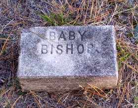BISHOP, BABY - Greene County, Arkansas | BABY BISHOP - Arkansas Gravestone Photos